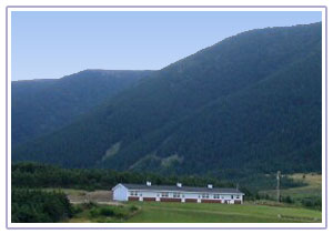 Cosy Accommodation in the Cape Breton Highlands